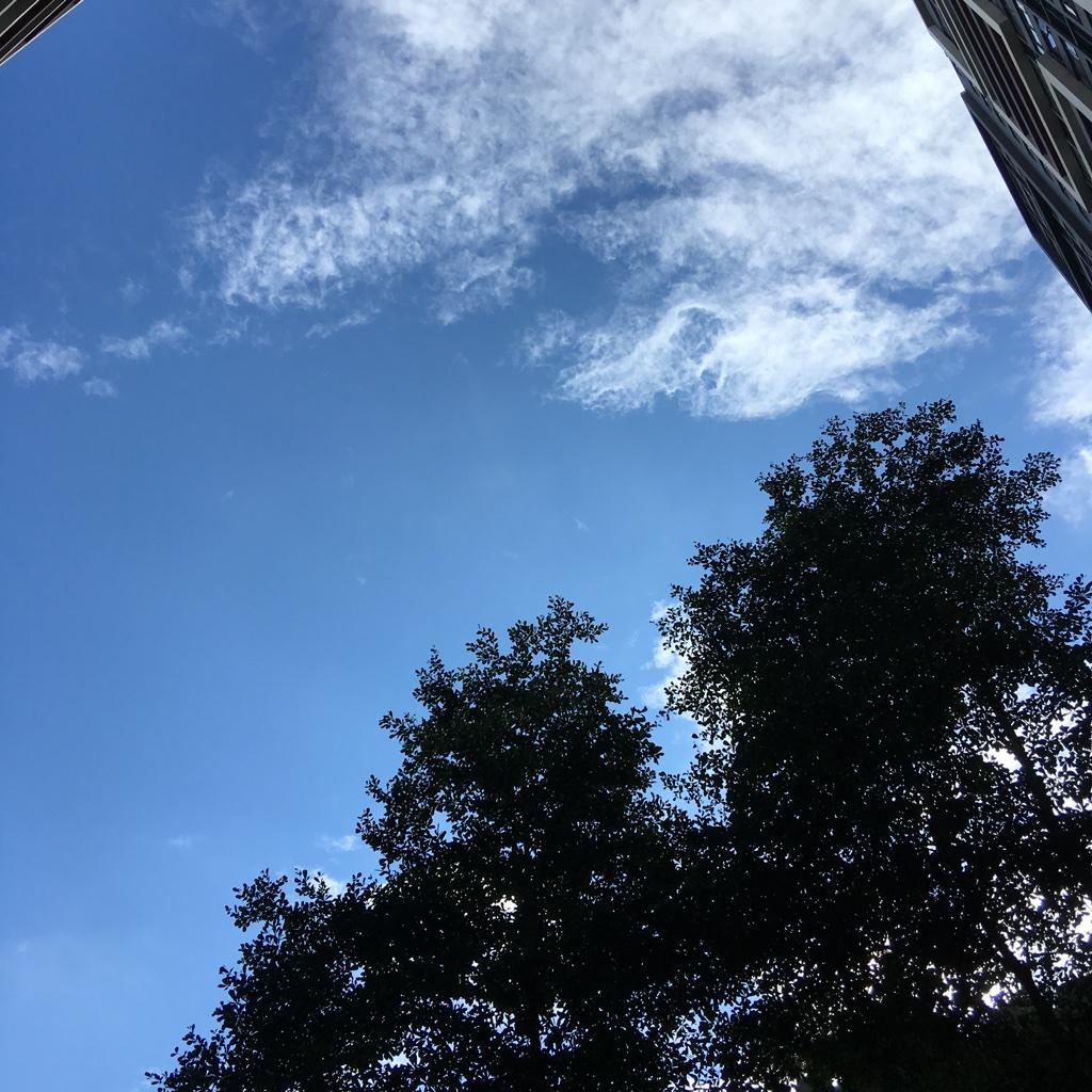蓝天白云十分少见