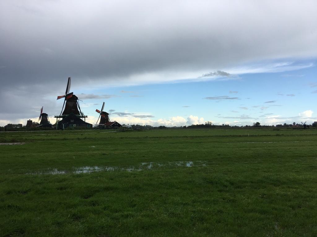 风车村的风车